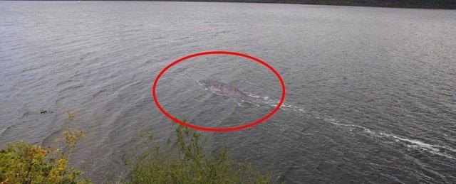 Tranh cãi về hình ảnh mới nhất được cho là quái vật hồ Loch Ness - 1