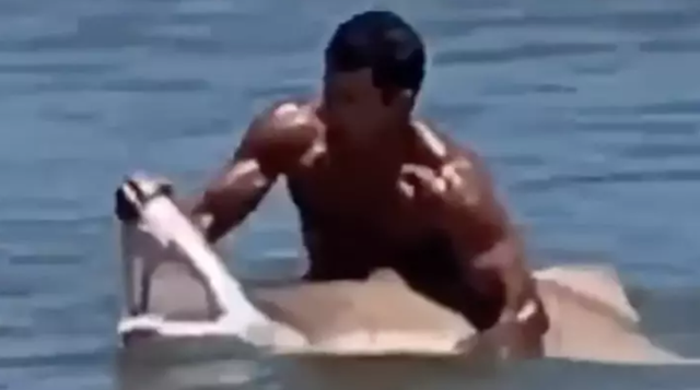 Người đàn ông dùng tay không móc hàm cá mập - 1