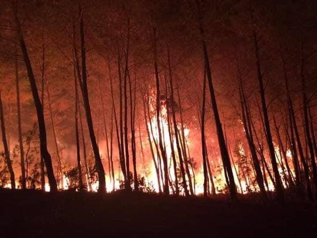 Cháy rừng thông hơn 30 năm tuổi,cả nghìn người tham gia dập lửa - 5