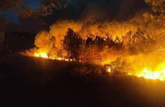 Cháy rừng thông hơn 30 năm tuổi,cả nghìn người tham gia dập lửa - 3