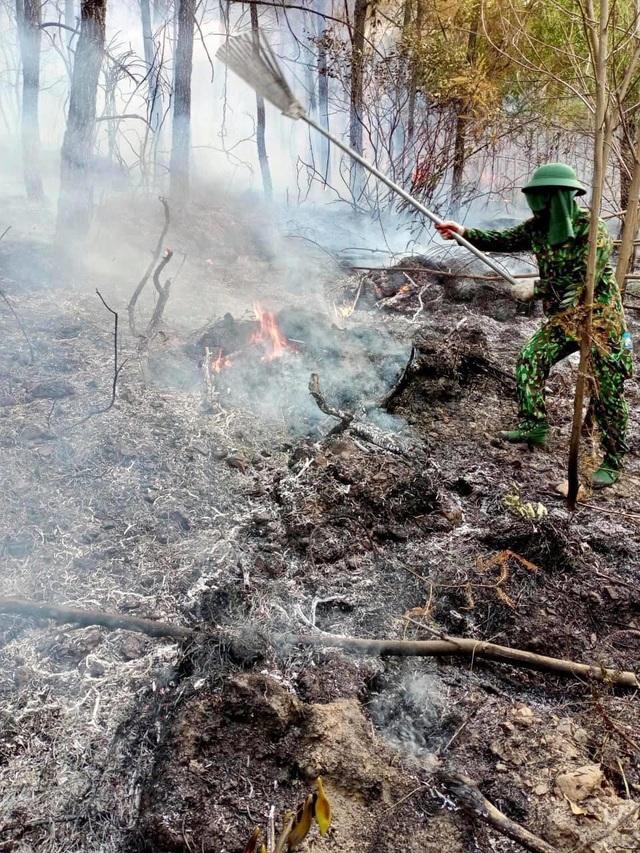 Rừng thông lại bốc cháy, huy động toàn lực để khống chế - 3