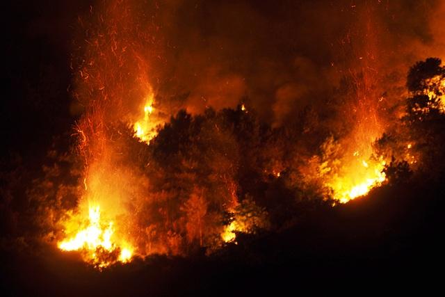 Cận cảnh biển lửa đỏ rực trong đám cháy rừng kinh hoàng ở Nghệ An, Hà Tĩnh - 2