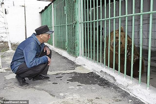 Gấu bị kết án tử hình vì tấn công hai cha con - 2