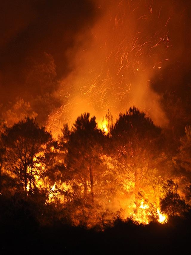 Cận cảnh biển lửa đỏ rực trong đám cháy rừng kinh hoàng ở Nghệ An, Hà Tĩnh - 1
