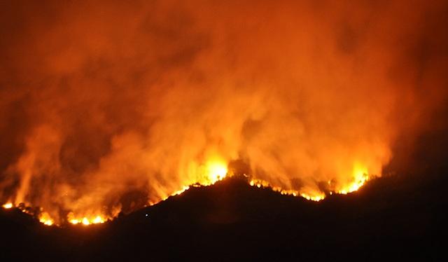 Bộ Nông nghiệp chỉ đạo các biện pháp ngăn thảm họa cháy rừng - 3