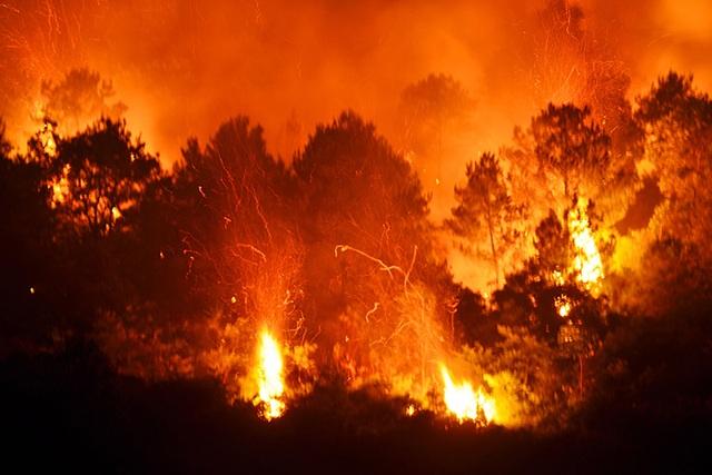 Cận cảnh biển lửa đỏ rực trong đám cháy rừng kinh hoàng ở Nghệ An, Hà Tĩnh - 5