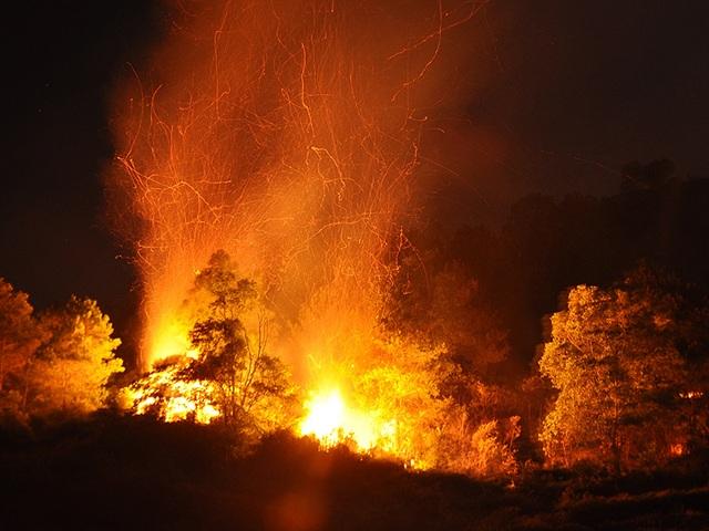 Cận cảnh biển lửa đỏ rực trong đám cháy rừng kinh hoàng ở Nghệ An, Hà Tĩnh - 3