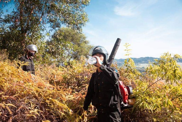 Đám cháy rừng bùng phát trở lại sau hơn 10 giờ bị khống chế - 2