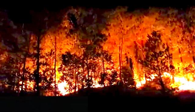 Cận cảnh biển lửa đỏ rực trong đám cháy rừng kinh hoàng ở Nghệ An, Hà Tĩnh - 17