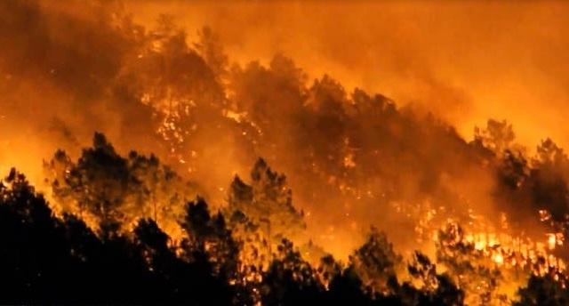 Cận cảnh biển lửa đỏ rực trong đám cháy rừng kinh hoàng ở Nghệ An, Hà Tĩnh - 8