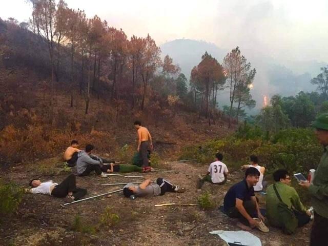Cảnh rừng hoang tàn sau nhiều đợt cháy lớn liên tiếp - 13