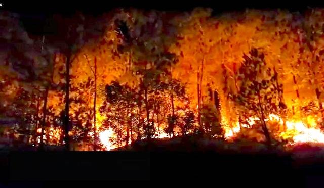 Cận cảnh biển lửa đỏ rực trong đám cháy rừng kinh hoàng ở Nghệ An, Hà Tĩnh - 13