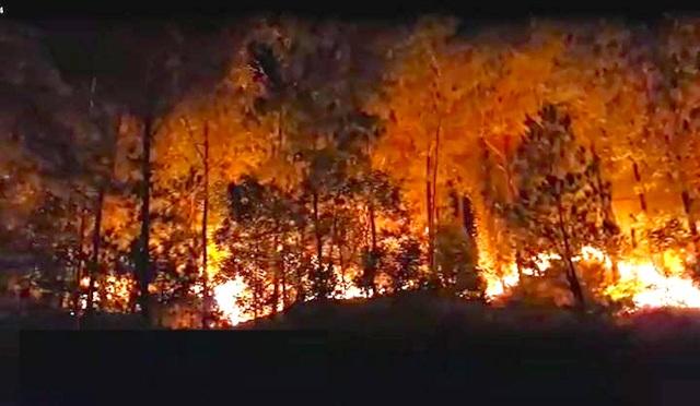 Cận cảnh biển lửa đỏ rực trong đám cháy rừng kinh hoàng ở Nghệ An, Hà Tĩnh - 10