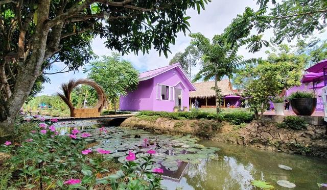 Căn nhà màu tím độc nhất miền Tây - 13
