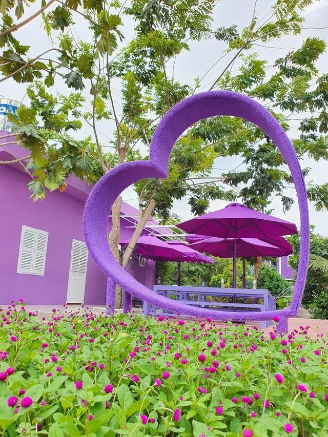 Căn nhà màu tím độc nhất miền Tây - 4