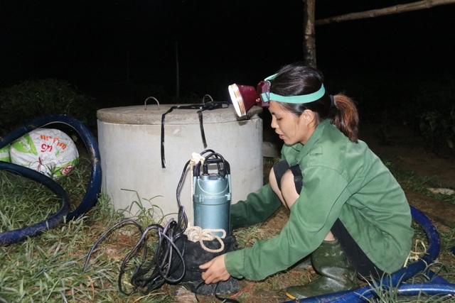 Xót ruột vì cây héo khô, người trồng chè thức trắng đêm tưới nước - 9