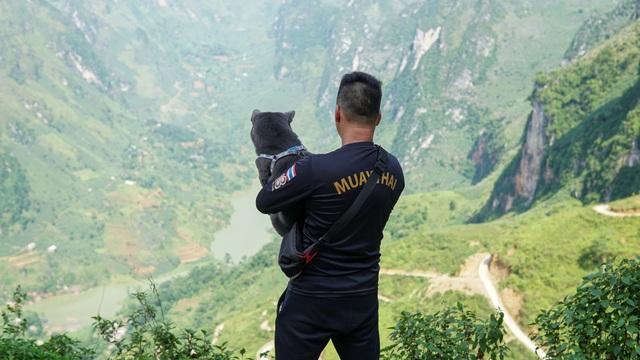 Chú chó mê du lịch, check-in muôn nơi, có 230 ngàn người theo dõi - 6