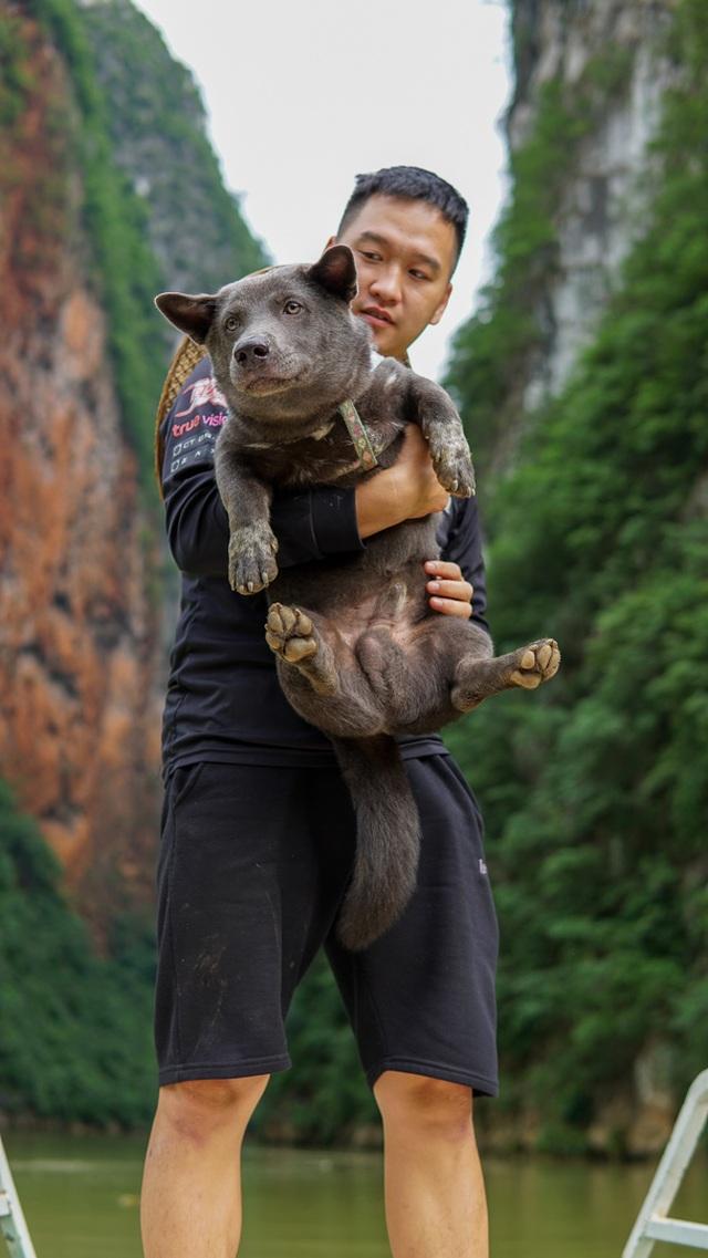 Chú chó mê du lịch, check-in muôn nơi, có 230 ngàn người theo dõi - 7