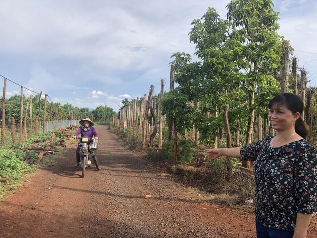 Người phụ nữ làm kinh tế giỏi hiến hơn 1.500m2 đất làm đường - 4
