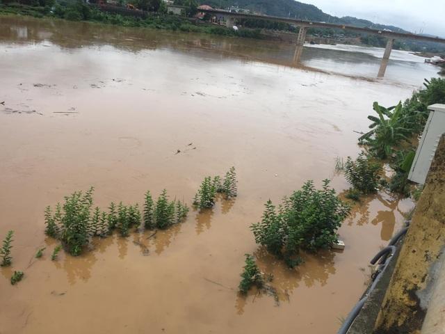 Lũ lớn trên thượng nguồn sông Hồng, nhiều nơi ở Lào Cai ngập nặng - 2