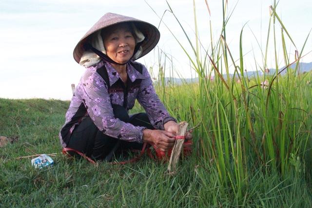 Hà Tĩnh: Kiếm tiền từ thu hoạch sen cuối vụ - 12