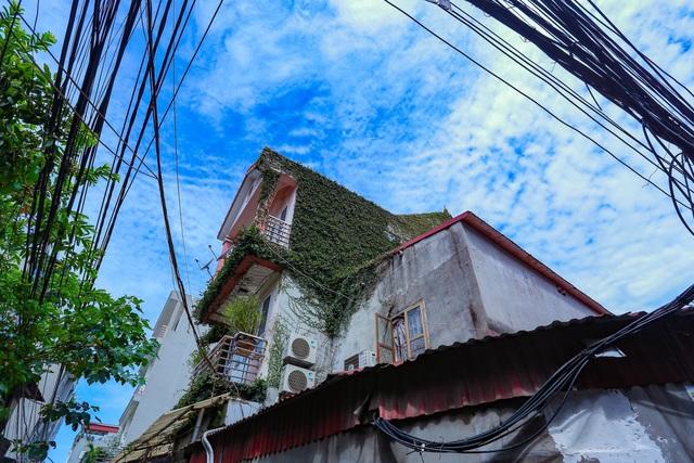"""Sững sờ trước ngôi nhà phố được """"ngụy trang"""" bằng dây leo ở Hà Nội - 3"""