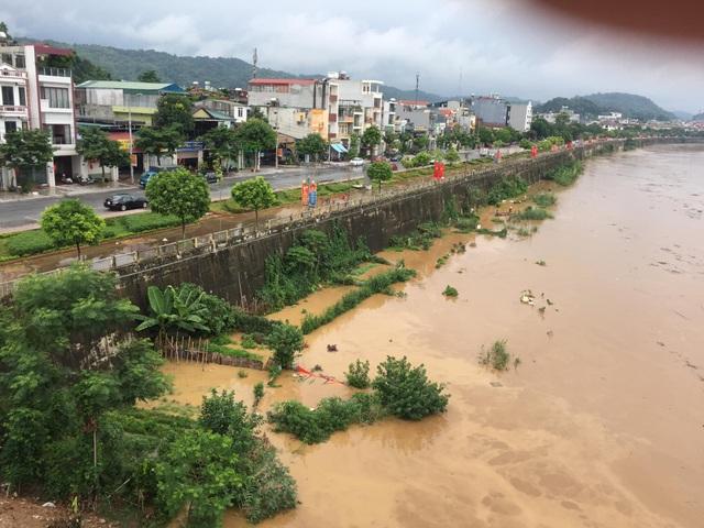 Cận cảnh lũ lớn trên sông Hồng - 1