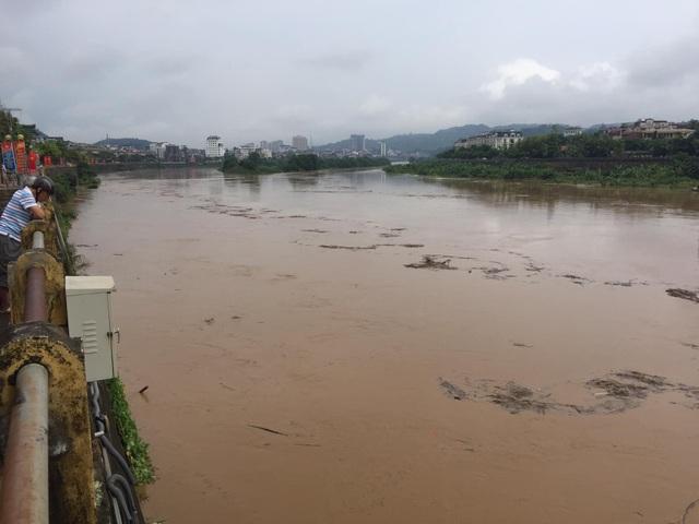 Cận cảnh lũ lớn trên sông Hồng - 7