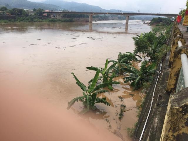 Cận cảnh lũ lớn trên sông Hồng - 5