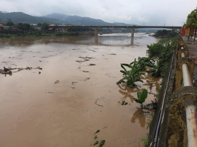 Cận cảnh lũ lớn trên sông Hồng - 8