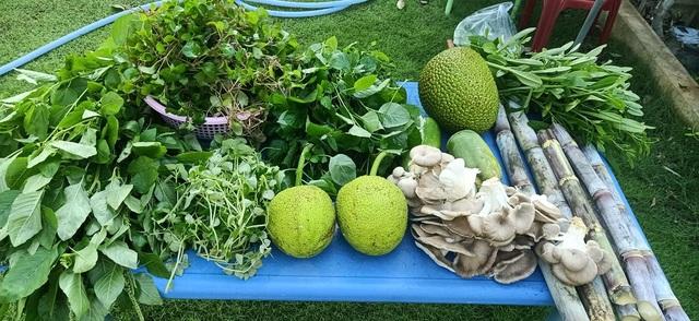 Bỏ phố về quê, mẹ đảm ở Bình Dương làm nhà vườn, trồng rau nuôi cá - 8