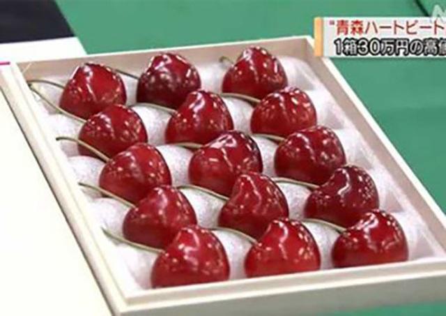 Cherry Nhật đắt kỷ lục, về Việt Nam giá 6,6 triệu đồng/kg - 2