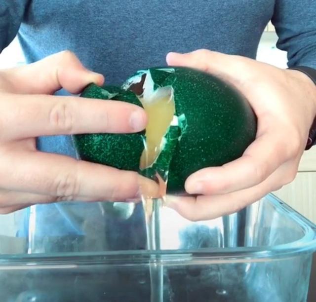 Trứng đà điểu Emu giá tiền triệu, nhà giàu ăn sang cũng phải nhịn miệng - 4