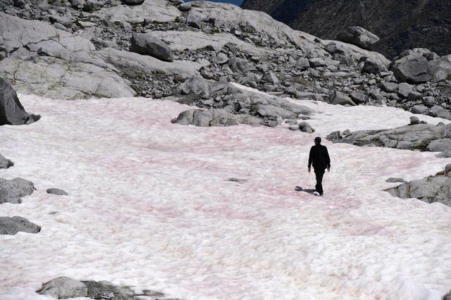 Băng hồng bí ẩn xuất hiện trên dãy Alps - 2