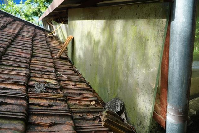 Xưởng chế biến gỗ gây ô nhiễm ngày đêm tra tấn người dân tại Phú Thọ - 8