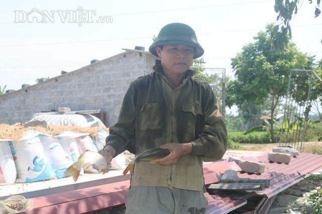 Nuôi cá chép lai thâm canh, nông dân Thanh Hóa lời 150 triệu đồng/ha - 5