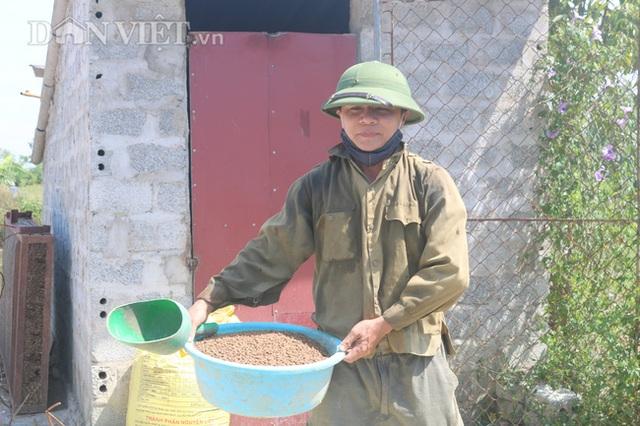 Nuôi cá chép lai thâm canh, nông dân Thanh Hóa lời 150 triệu đồng/ha - 8