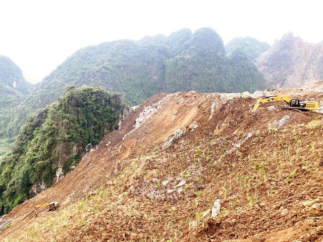 Doanh nghiệp tàn phá hơn 32.000m2 rừng phòng hộ - 2