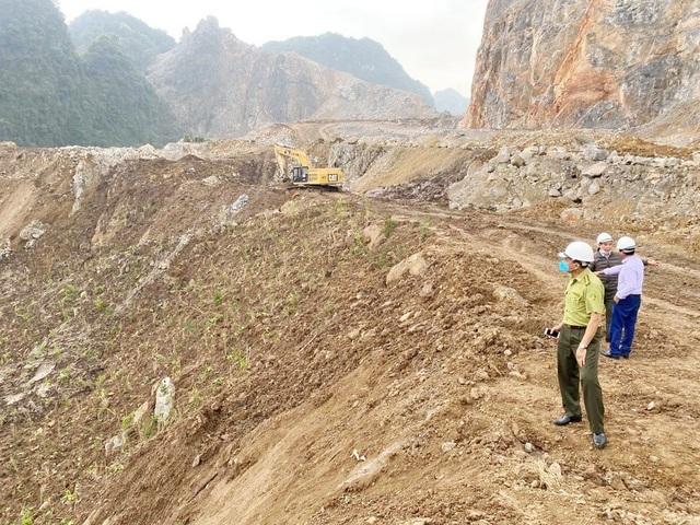 Doanh nghiệp tàn phá hơn 32.000m2 rừng phòng hộ - 3