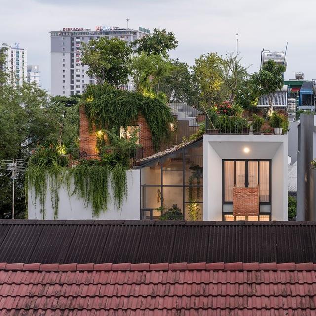 """Làm công viên trên sân thượng, gia đình Sài Gòn có góc """"sống ảo"""" tuyệt đẹp - 1"""