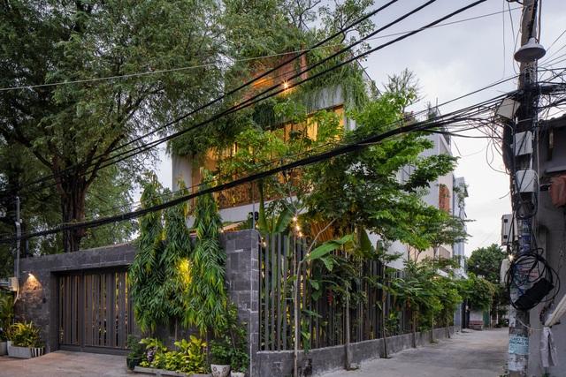 """Làm công viên trên sân thượng, gia đình Sài Gòn có góc """"sống ảo"""" tuyệt đẹp - 2"""