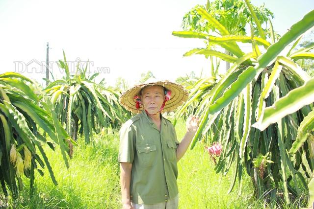"""""""Lão gàn"""" biến đất sỏi đá thành vườn cây ăn quả, thu hàng trăm triệu mỗi năm - 2"""