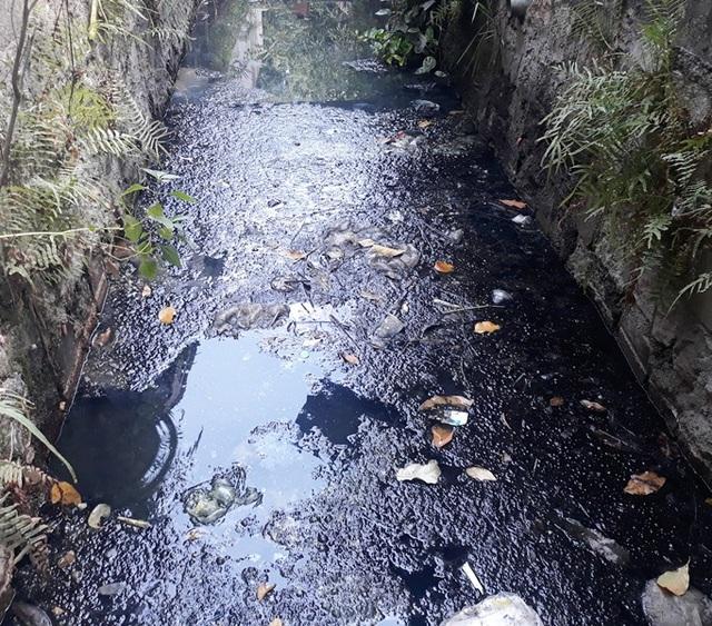 Doanh nghiệp bức tử môi trường, cả dân và chính quyền tột cùng phẫn nộ! - 1