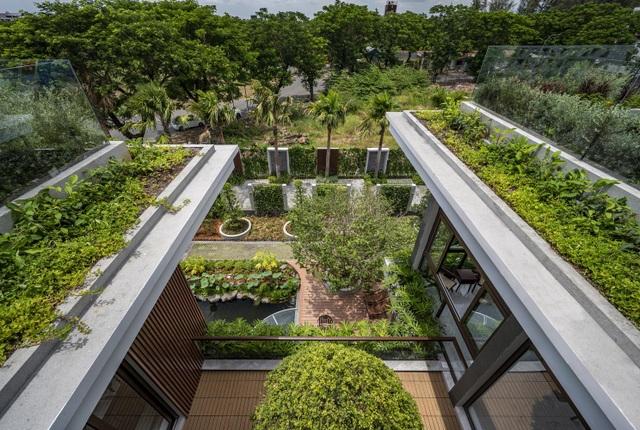 Cuộc sống bình yên trong biệt thự vườn rợp bóng cây xanh ở Cần Thơ - 4