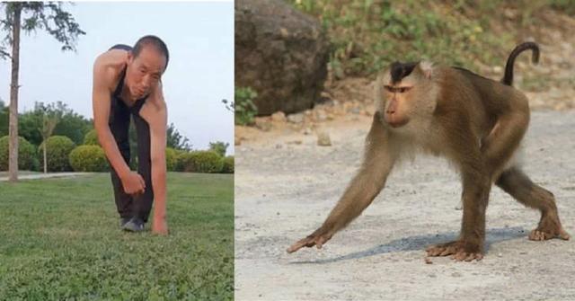 Tập thể dục kiểu đi 4 chân như khỉ suốt 30 năm - 1