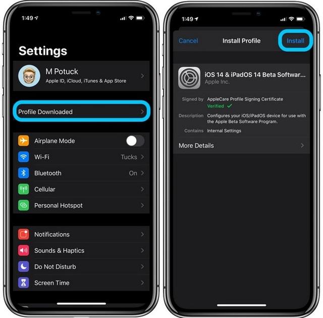 Hướng dẫn nâng cấp iPhone, iPad lên nền tảng iOS 14 và iPadOS 14 beta - Ảnh minh hoạ 4