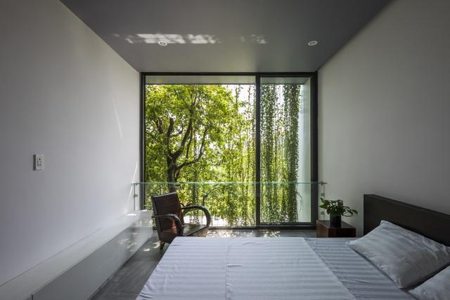 """Vợ chồng trẻ ở Huế làm """"vườn đặt trong nhà"""" khiến mùa hè vẫn mát rượi - 15"""