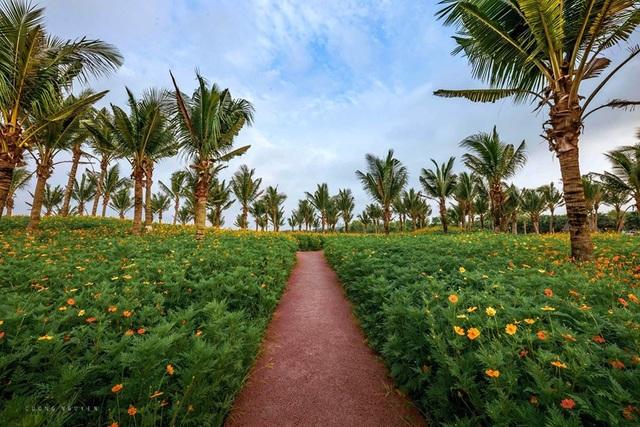 """Phát """"sốt"""" với những con đường hoa đẹp như trời Tây ngay gần Hà Nội - 6"""