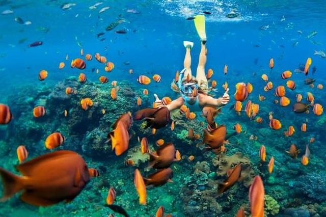 Trải nghiệm kỳ nghỉ siêu sang với chi phí hợp lý bất ngờ tại Bắc Đảo Phú Quốc hè này - 10