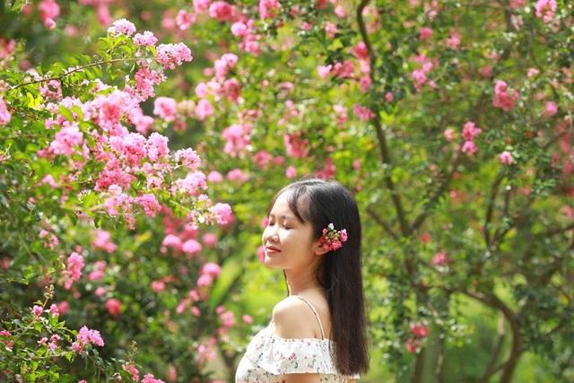 """Phát """"sốt"""" với những con đường hoa đẹp như trời Tây ngay gần Hà Nội - 12"""